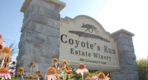 coyotes run sign